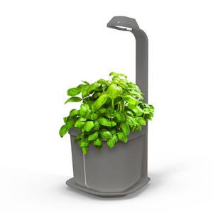 Tregren Genie hydroponic indoor garden grey