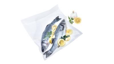 Status commercial vacuum sealer with fish